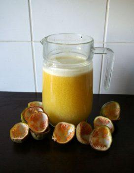 Aistros vaisių sultys